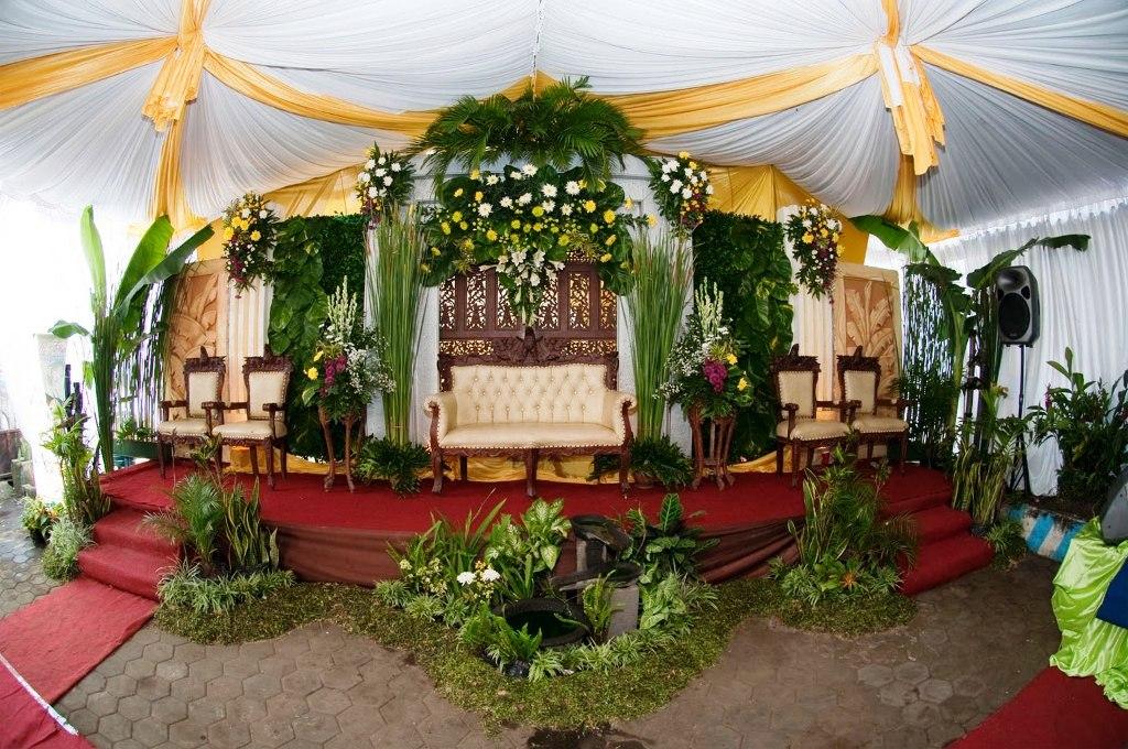 Tips Mengadakan Resepsi Pernikahan Di Rumah Rizqy Agung